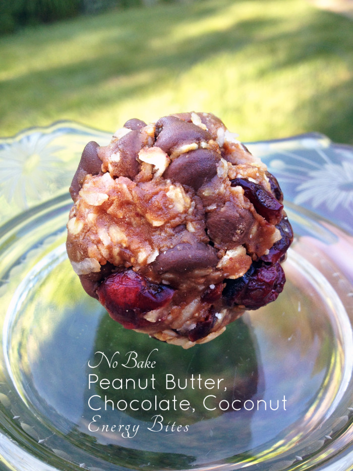 No Bake Peanut Butter Chocolate Coconut Energy Bites - Peaceful Dumpling