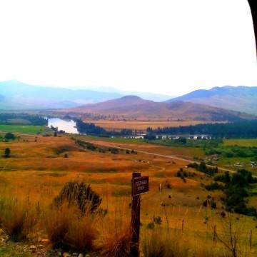 Healing Ingredients: Huckleberries and Other Edibles in Montana