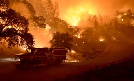 California Wildfires Weren't Caused By Poor Forest Management. What You Must Know